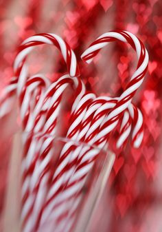 Christmas photography candy cane fine art by IonAnthosPhotography