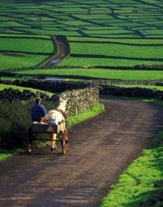 Ireland in the Spring.