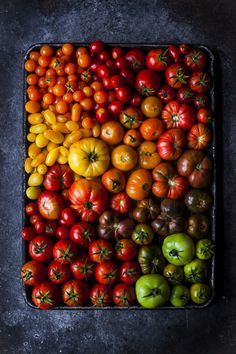 Tomatoes by onegirlinthekitchen on Flickr.