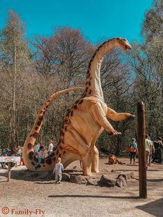 Dinosaurierpark Teufelsschlucht.1,5 Km. Rundgang - 620 Millionen Jahre Statues, Dino Park, Star Wars Art, Prehistoric, Giraffe, Beast, Hawaii, Camping, Places To Visit