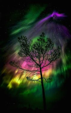 Aurora Borealis - The Northern Lights. A beautiful mixture of colors in the sky. Beautiful Sky, Beautiful Landscapes, Beautiful World, Science And Nature, Nature Nature, Amazing Nature, Belle Photo, Night Skies, Sky Night