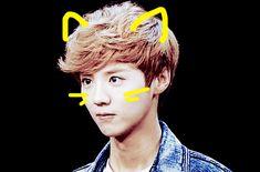 kpop cats ears - Szukaj w Google