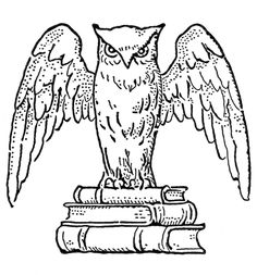 retro owl coloring pages | 52 Best OWLs! images in 2017 | Owl, Owls, Tawny owl