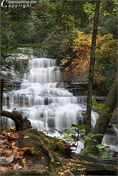 Autumn at Minnehaha Falls, Chattahoochee National Forest in northwest #Georgia,