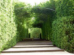 Tunnel végétal dans les Jardins de l'Imaginaire par lesjardinsdelimaginaire