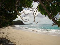 Two more days and then it's ISLAND TIME with the family until July 10th!! Cannot wait! Culebra!