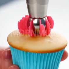 OFF - Cake Decor Piping Tips - Hurry! On Sale Now! Want to decorate a birthday cake? Or learn how to design beautiful colorful pas - Cupcake Frosting Tips, Cupcake Cakes, Cupcake Blog, George W Bush, Icing Nozzles, Piping Tips, Apple Blossoms, Food Items, Floral Designs