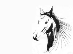 horse tattoos | Free designs - Penciled horse tattoo wallpaper