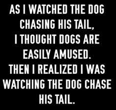 It's even funnier when my dog come running down the stairs but realizes that there is no traction on the hardwood floor, so she goes sliding through the kitchen and then we all hear a thump on the dining room wall.