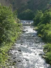 Resultado de imagem para rios