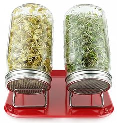 Lotus  Sky Pure Convenience Deluxe Sprouting System  Pure Glass and Stainless Steel Sprouting Jars Stands  Tray  Super Easy  Organic Broccoli  Lentil Seeds  Dishwasher Safe PCDLXRED Red -- ** AMAZON BEST BUY ** #Gadgets10Discount