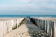 warm walks on the beach