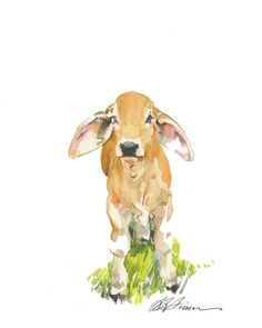 Watercolor Artwork, Watercolor Print, Watercolor Illustration, Watercolor Paper, Cow Illustration, Cow Drawing, Drawing Ideas, Cow Tattoo, Cow Art