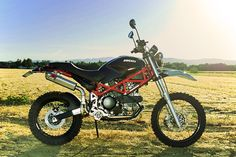 Ducati Terra Mostro something really original
