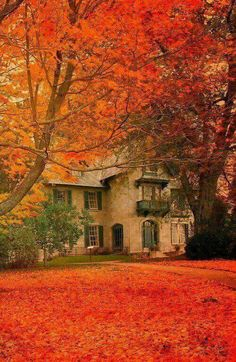 Linwood House at the Norman Rockwell Museum, Stockbridge, Massachusetts. My favorite artist and my favorite season - I have to visit this place! Beautiful Places, Beautiful Pictures, Simply Beautiful, Autumn Scenes, Fall Pictures, Norman Rockwell, Belle Photo, Autumn Leaves, Autumn Rain
