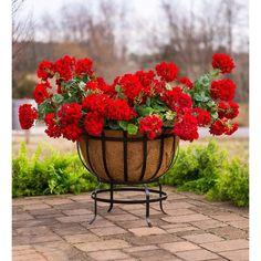 Footed Metal Basket Planter with Coco Liner – Lange General Store Wicker Planter, Basket Planters, Planter Pots, Railing Planters, Decorative Planters, Metal Baskets, Unique Gardens, Garden Gifts, Compost