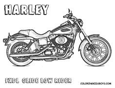 harley davidson logo coloring pages harley davidson colouring pages