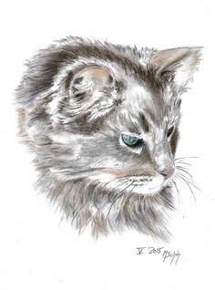 Artist Marion Schön Dieser Kater hat mich so fasziniert, dass ich ihn einfach zeichnen musste - thank you Dale for the permission to draw your Snuckles heart emoticon What a cat!