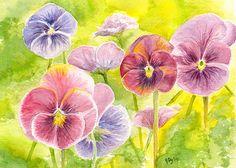 Pansies Watercolor Painting Fine Art Print 5 por jamesriverstudios