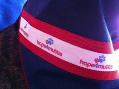 Un nuevo tuli-pañuelo solidario para perros. By O Clube da Tula for Hope4mutts (Maia, Portugal). http://oclubedatula.com/tuli-lenco-para-hope4mutts-by-o-clube-da-tula/