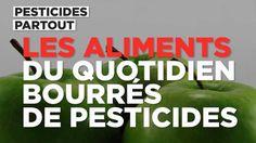 """""""Pesticides partout... Le muesli n'est pas le seul en cause, loin de là !... Pain, vin, pomme et même fruits de mer sont bourrés de pesticides. Regardez notre vidéo ci-dessus (et mangez bio).""""... http://tempsreel.nouvelobs.com/societe/20161011.OBS9692/video-pain-vin-pomme-ces-aliments-du-quotidien-bourres-de-pesticides.html"""