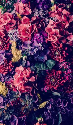 Vintage floral iPhone Wallpaper Collection – My CMS Frühling Wallpaper, Iphone 7 Plus Wallpaper, Apple Watch Wallpaper, Iphone Wallpapers, Nature Wallpaper, Spring Flowers Wallpaper, Flower Phone Wallpaper, Trendy Wallpaper, Awesome Wallpapers For Iphone