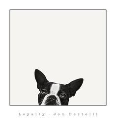 Loyalty - Jon Bertelli $18.50