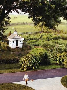 Read about Dede McGehee's garden in the March issue of Martha Stewart Living. What a beautiful, dream space!