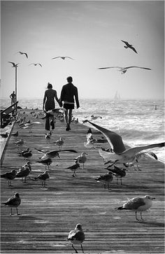 Fine black and white beach photography. Black And White Beach, Black White Photos, Black And White Photography, Beach Photography, Couple Photography, Photo Hacks, Foto Poster, Am Meer, Belle Photo