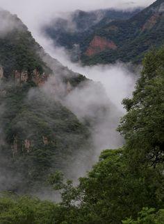 Las Yungas tener clima tropical y esta en el sur de la pais. Esta en Peru y bolivia. Hay muchos rescuros naturales. La clima varia entre lluve y el monzon.