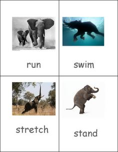 For verb/action box or command box. Elephant action cards.