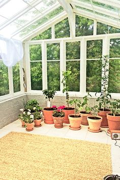 Växthus av gamla fönster Slag, Inspiration, Ideas, Garden Tool Storage, Biblical Inspiration, Motivation