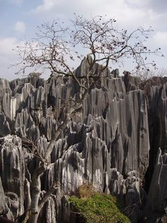 The Stone Forest, China This magnificent and eerie landscape is basically a set of karst formations that loosely resemble huge trees made of stone, hence the name