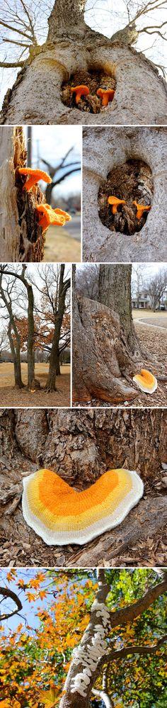 Leigh Martin - knitted mushroom installations <3