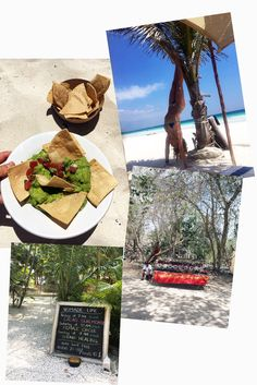 tess ward, mexico, travel, howlita, tulum, del cielo, hartwood, food, tacos, beetroot, avocado, creme, bar, cocktails, dinner, beach, guacamole, avocado