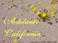Adelanto in San Bernardino, CA