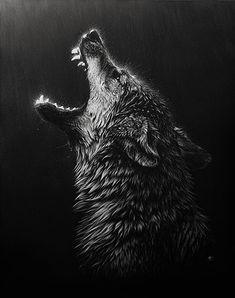 Wolf howlin' at the rain. …