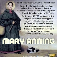 Image result for mary anning infographic