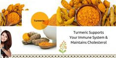 #Turmeric Supports Your Immune System And Maintains Cholesterol – #Indian #Exporters' Report