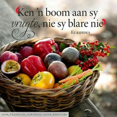 Goeie More, Afrikaans Quotes, Inspirational Qoutes, Fruit Of The Spirit, Religious Quotes, Woman Quotes, Life Quotes, Hart, Words