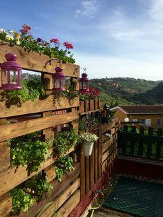 Vertical palet garden DIY