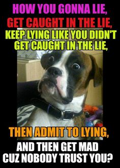 Image result for pathological liars memes
