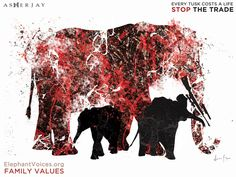 Artist, Asher Jay, has made raising awareness about wildlife poaching and the need for conservation her life's mission. See her incredible work here. National Geographic, Ivory Trade, Save The Elephants, Elephant Love, African Elephant, African Animals, Animal Cruelty, Animals Of The World, Dog Grooming
