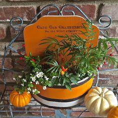 Autumn Planter Ideas