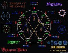 Vortex Based Mathematics Ennead
