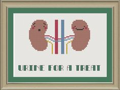 Urine for a treat: nerdy kidney cross-stitch pattern