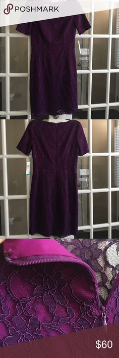 Ivy & Blu Maggy Boutique Cassie size 8 Dress NWT - Size 8 purple Lace overlay Cocktail Dress. Stunning! Ivy & Blu Dresses Midi
