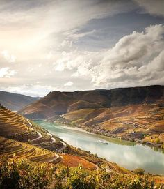 Douro Valley | Portugal