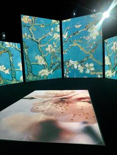 Photos of Van Gogh Alive MAAG Halle Zurich. Exhibition charting the life of Vincent Van Gogh and his life as a painter inn Zurich Switzerland Halle, Opening Day, Zurich, Vincent Van Gogh, Wonderful Time, Something To Do, Stuff To Do, Art Gallery, Colours