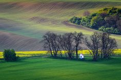 The chapel of st. Barbara on Moravian fields during spring time in Czech republic